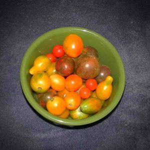 Fresh Heirloom Grape Tomatoes from Brothers Farm (Portsmouth Va)